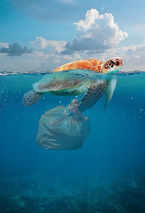 Ce plastique qui tue les océans