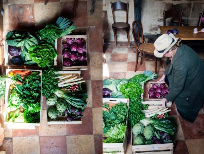 Qui sont les végétariens français ?