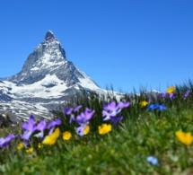 Cet été, le Secours Populaire emmène les enfants en Suisse