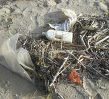 Les sacs plastique indésirables au Rwanda