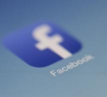 Elections européennes : le dispositif anti « Fake News » de Facebook sous surveillance