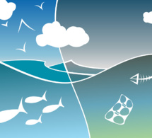 Les menaces qui pèsent sur les écosystèmes planétaires