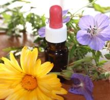 Homéopathie : de nouvelles dispositions présentées par le Conseil de l'Ordre des médecins