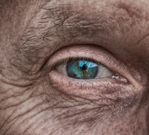 Greffe : de nouvelles perspectives pour la médecine régénérative de la peau