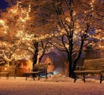 Minimas sociaux : une prime de Noël pour cette fin d'année