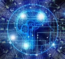 Un programme pour mieux détecter les tumeurs au cerveau