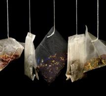 Boire du thé pour allonger son espérance de vie
